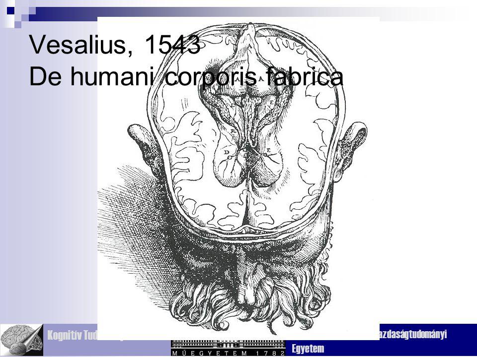 Kognitív Tudományi Tanszék Budapesti Műszaki és Gazdaságtudományi Egyetem Vesalius, 1543 De humani corporis fabrica