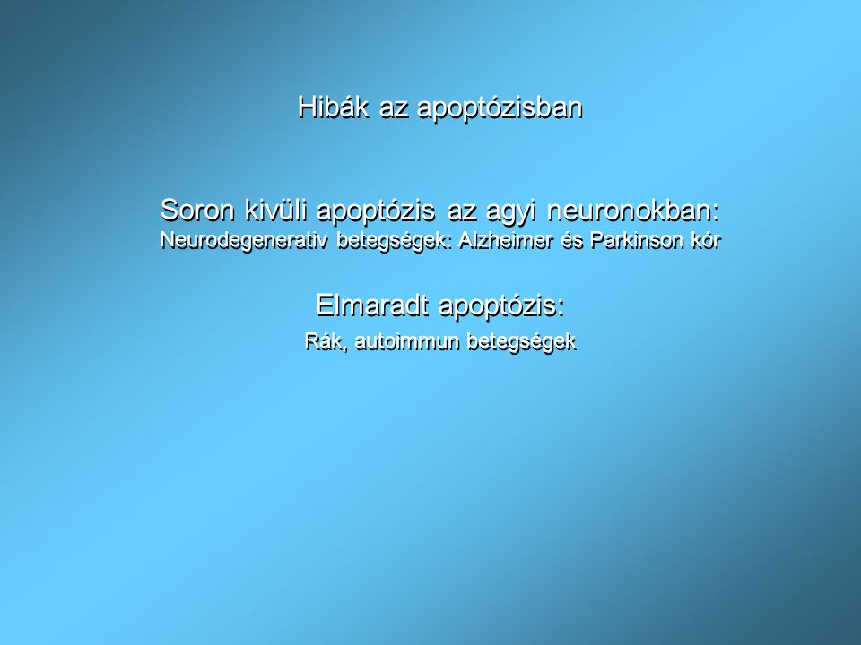 Az apoptózis fázisai 1.