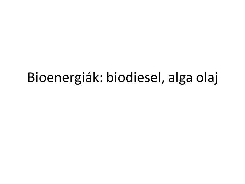 Biodízel Alternatív üzemanyag dízel motorba Növényi olajból vagy állati zsírból – lebomlik, környezetbarát, megújuló Monoalkil észter trigliceridészterből Fatty Acid Alcohol Glycerin Vegetable Oil Biodiesel FA