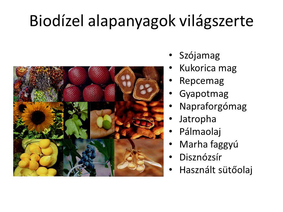 Biodízel melléktermékek Melléktermékek – Dara, olajpogácsa – Növényi biomassza – Glicerin (MeOH szennyezett) Felhasználás – Takarmány – Biomassza Égetés Biogáz – Glicerin Kozmetikai ipar Vegyipar Biogáz