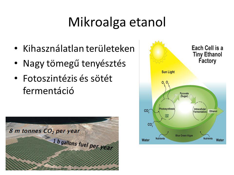 Mikroalga olaj Törzs szelekció Nemesítés – 100 000 faj – 30-40 000 ismert – 15-20 használt Fermentor, szabályozás Stressz: P/N limitáció De: stresszelt alga = csökkent biomassza