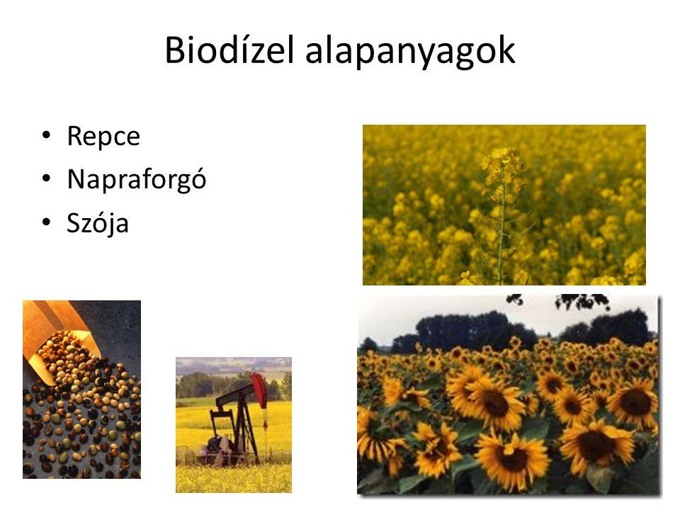 Biodízel alapanyagok világszerte Szójamag Kukorica mag Repcemag Gyapotmag Napraforgómag Jatropha Pálmaolaj Marha faggyú Disznózsír Használt sütőolaj