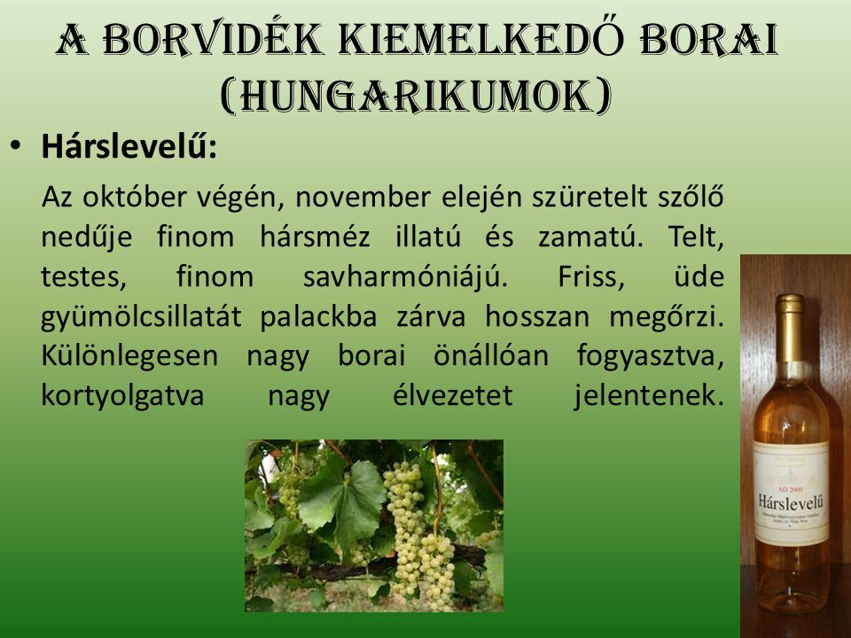Olaszrizling: Az október végén, november elején szüretelt szőlő igazán finom, különleges élvezetet nyújtó bort ad.