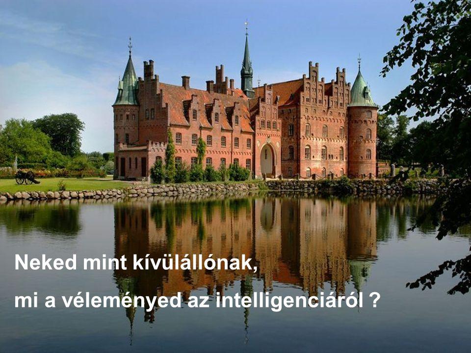 Neked mint kívülállónak, mi a véleményed az intelligenciáról ?
