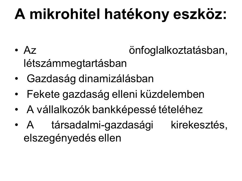 HATÉKONY MIKRO- FINANSZÍROZÁS INTEGRÁLT SZOLGÁLTATÁSSAL !!!!.
