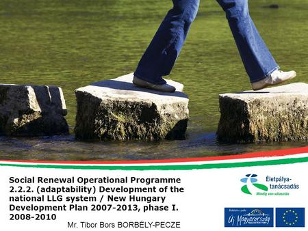 Social Renewal Operational Programme 2.2.2. (adaptability) Development of the national LLG system / New Hungary Development Plan 2007-2013, phase I. 2008-2010.