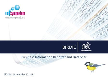 BIRDIE Business Information Reporter and Datalyser Előadó: Schneidler József.