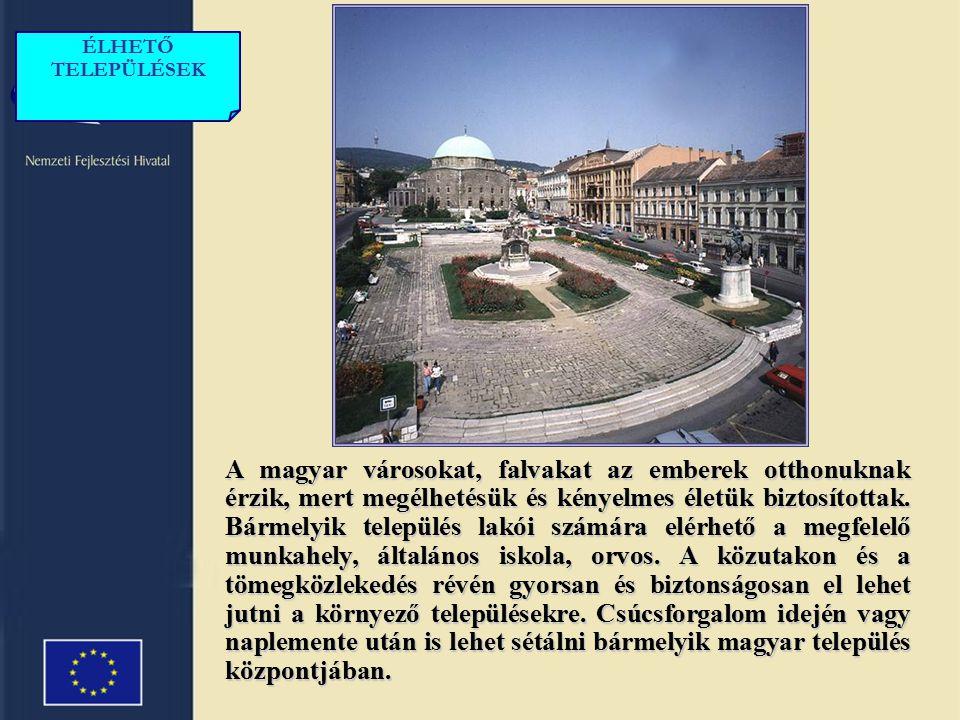 Több magyar tudományos központ nemzetközi vezető szerepet vív ki magának.