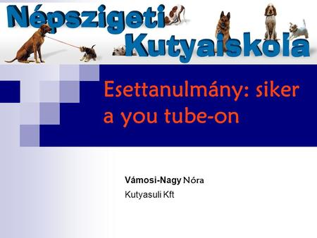 Esettanulmány: siker a you tube-on