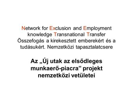 Network for Exclusion and Employment knowledge Transnational Transfer Összefogás a kirekesztett emberekért és a tudásukért. Nemzetközi tapasztalatcsere.