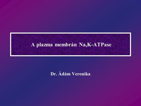 A plazma membrán Na,K-ATPase
