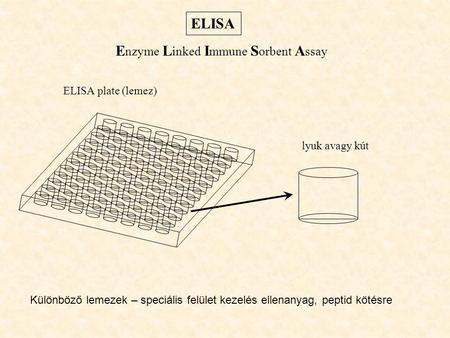Enzyme Linked Immune Sorbent Assay