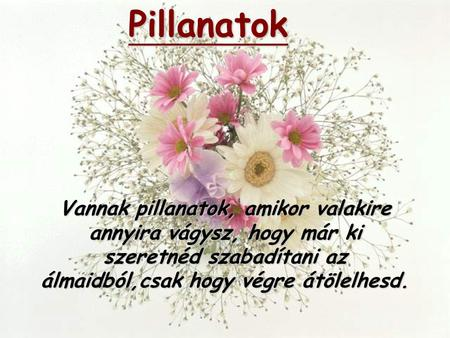 Pillanatok Download von Funny-Powerpoints.de
