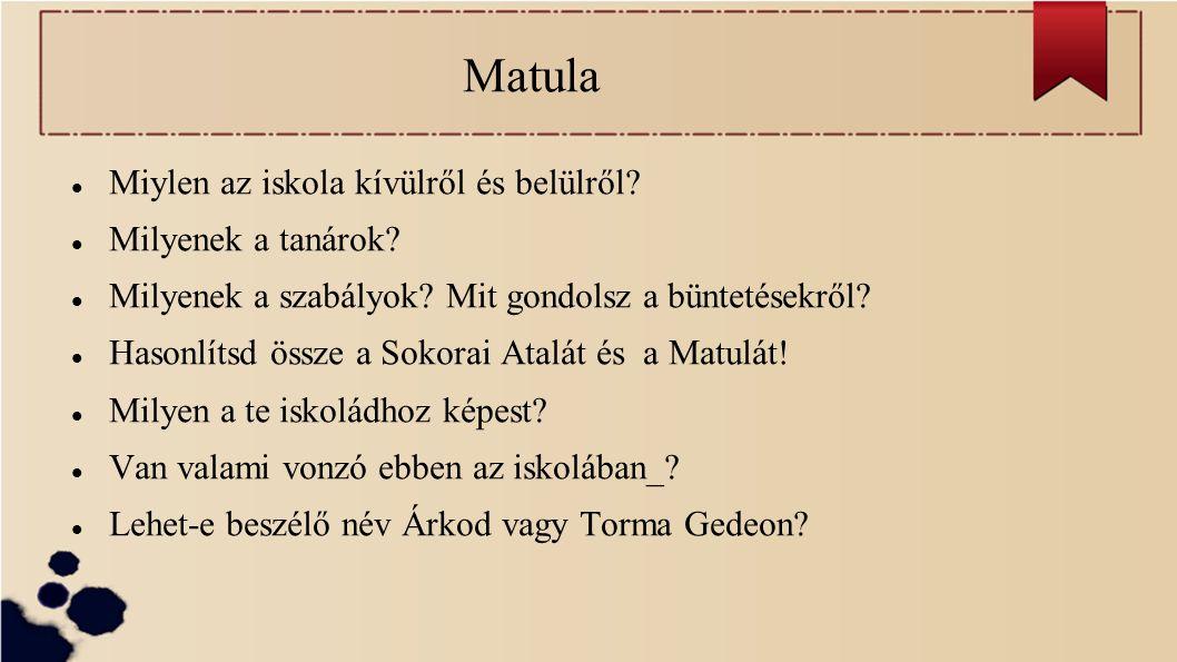 Matula Miylen az iskola kívülről és belülről Milyenek a tanárok