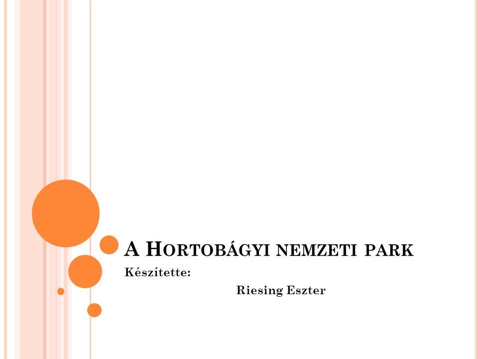A Hortobágyi nemzeti park