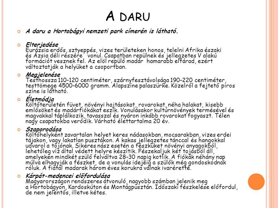 A daru A daru a Hortobágyi nemzeti park címerén is látható.
