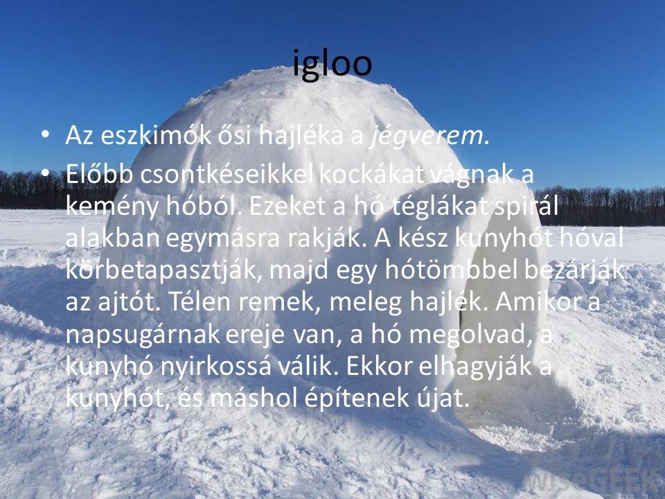 igloo Az eszkimók ősi hajléka a jégverem.