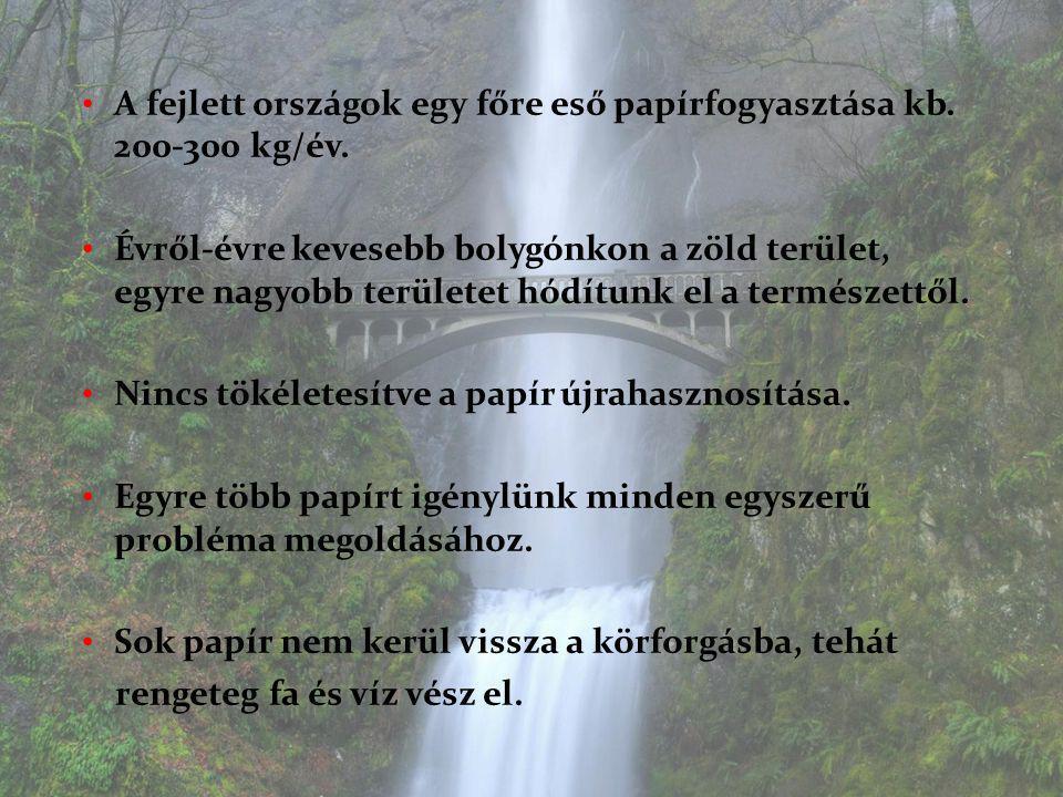 A fejlett országok egy főre eső papírfogyasztása kb. 200-300 kg/év.