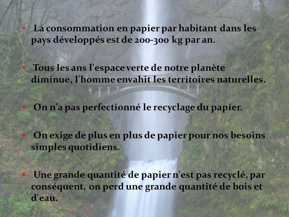 La consommation en papier par habitant dans les pays développés est de 200-300 kg par an.