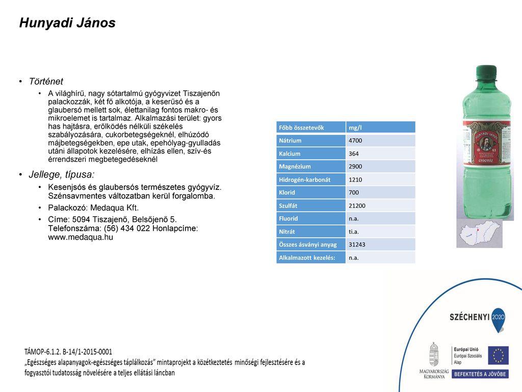Hunyadi János Jellege, típusa: Történet