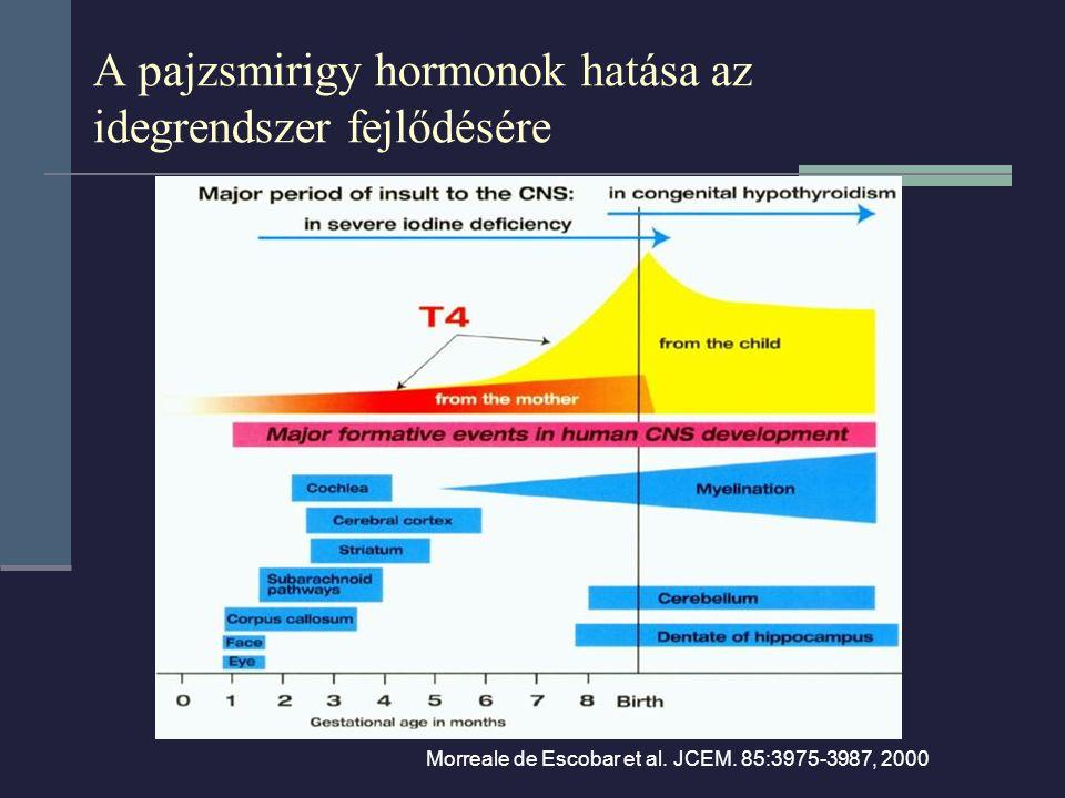 A pajzsmirigy hormonok hatása az idegrendszer fejlődésére
