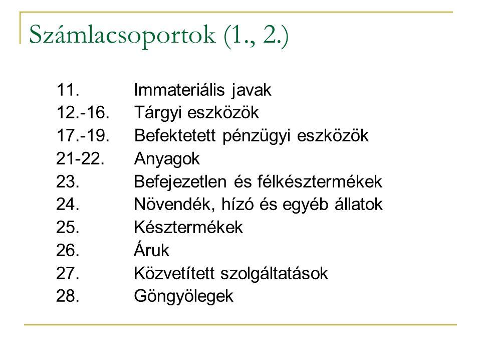 Számlacsoportok (1., 2.) 11. Immateriális javak