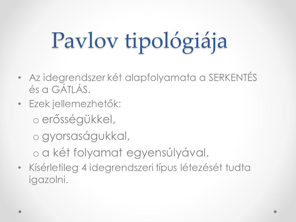 Pavlov tipológiája erősségükkel, gyorsaságukkal,