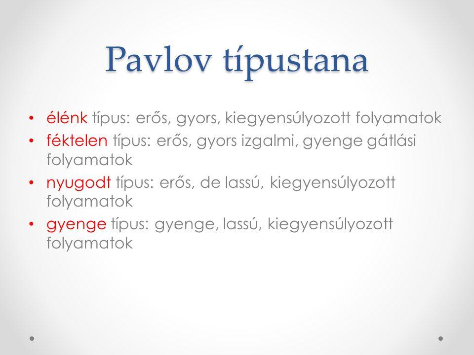 Pavlov típustana élénk típus: erős, gyors, kiegyensúlyozott folyamatok