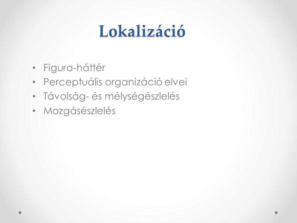 Lokalizáció Figura-háttér Perceptuális organizáció elvei