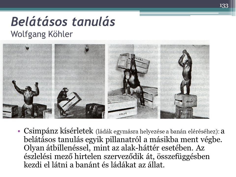 Belátásos tanulás Wolfgang Köhler