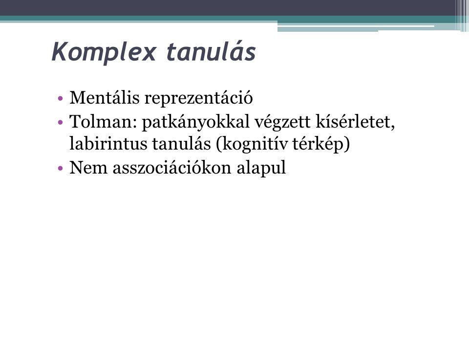Komplex tanulás Mentális reprezentáció
