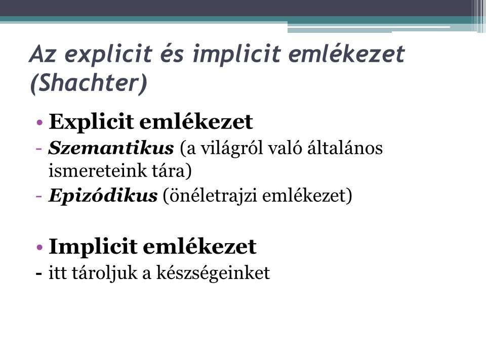 Az explicit és implicit emlékezet (Shachter)