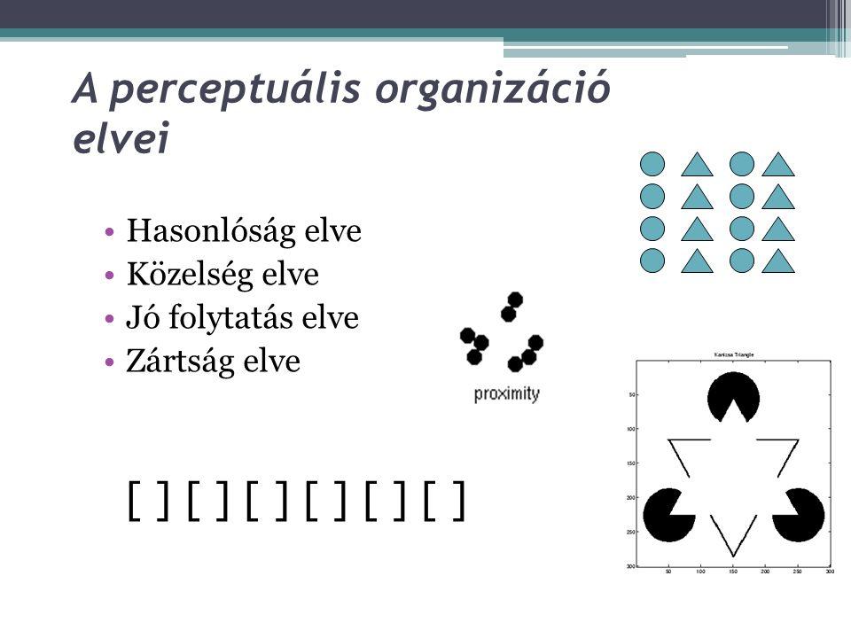 A perceptuális organizáció elvei