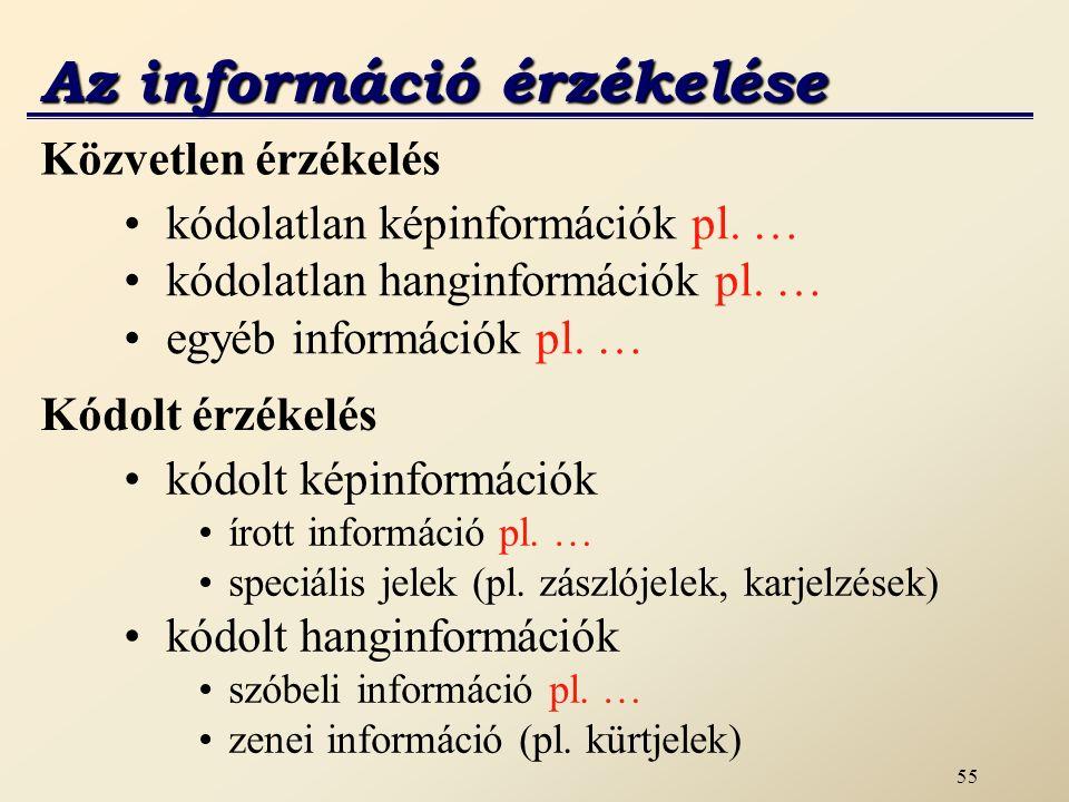 Az információ érzékelése