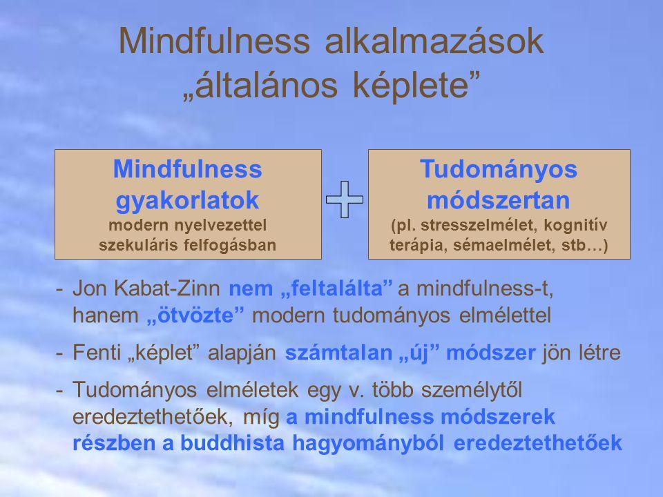 """Mindfulness alkalmazások """"általános képlete"""