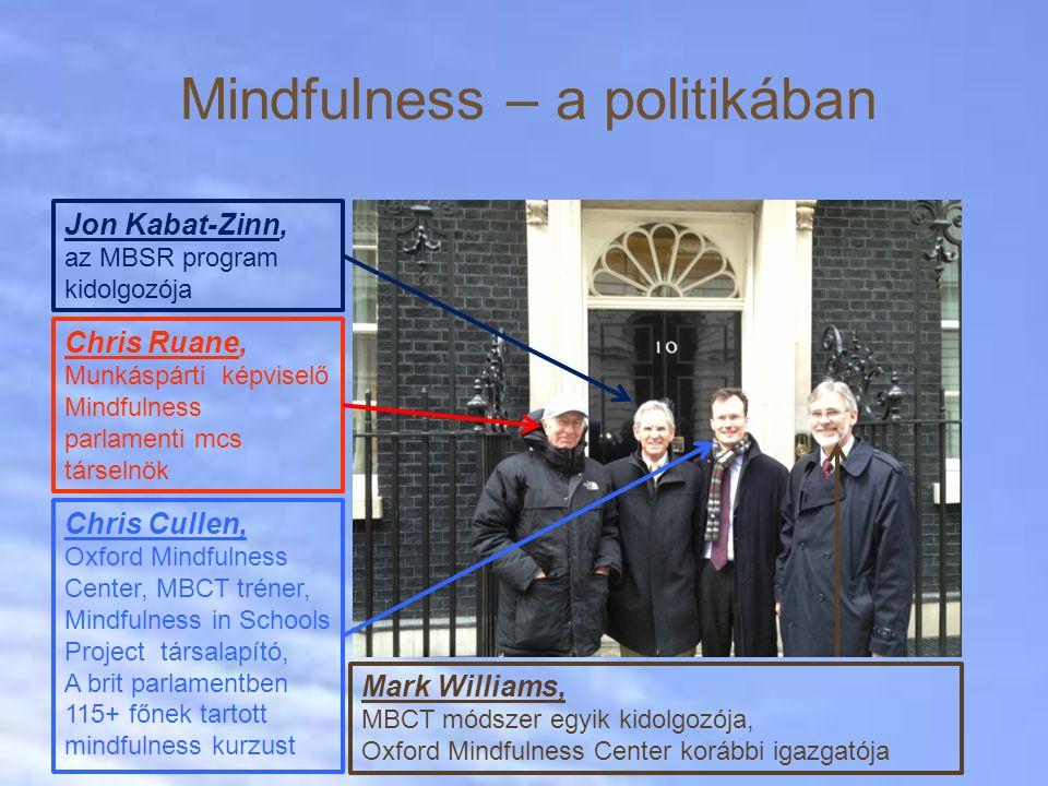 Mindfulness – a politikában
