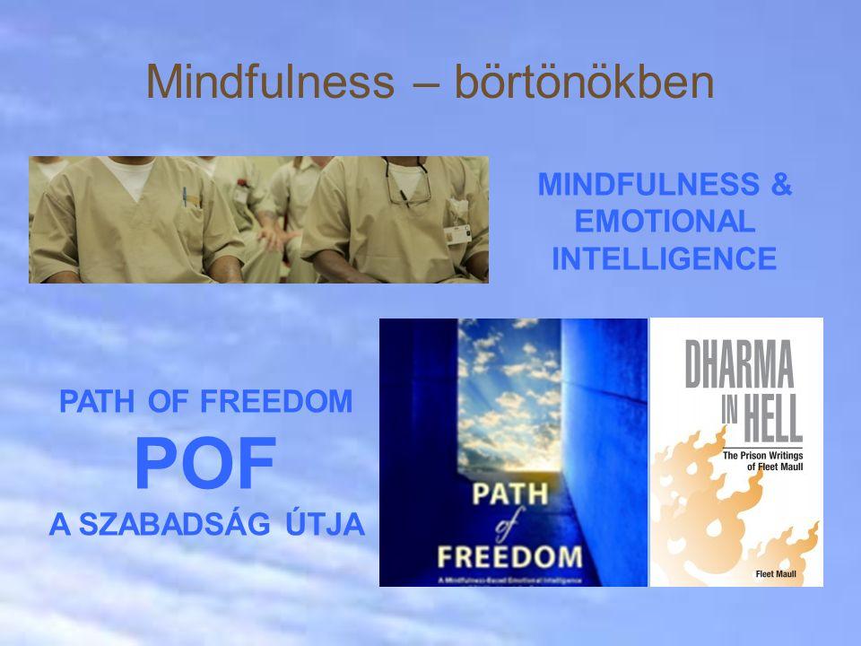 Mindfulness – börtönökben