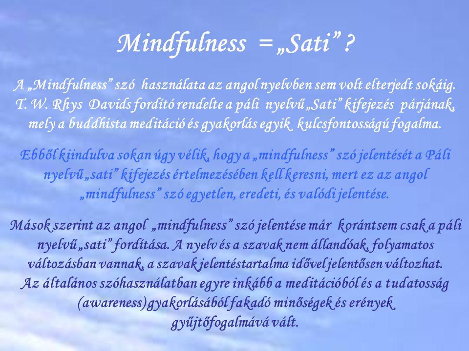 """Mindfulness = """"Sati"""