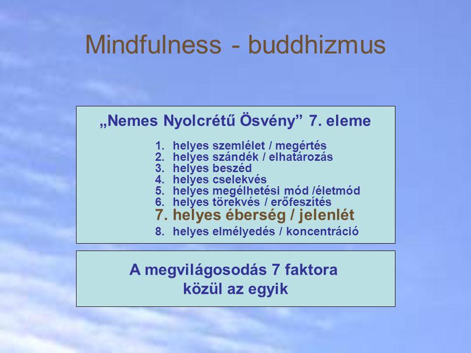 Mindfulness - buddhizmus