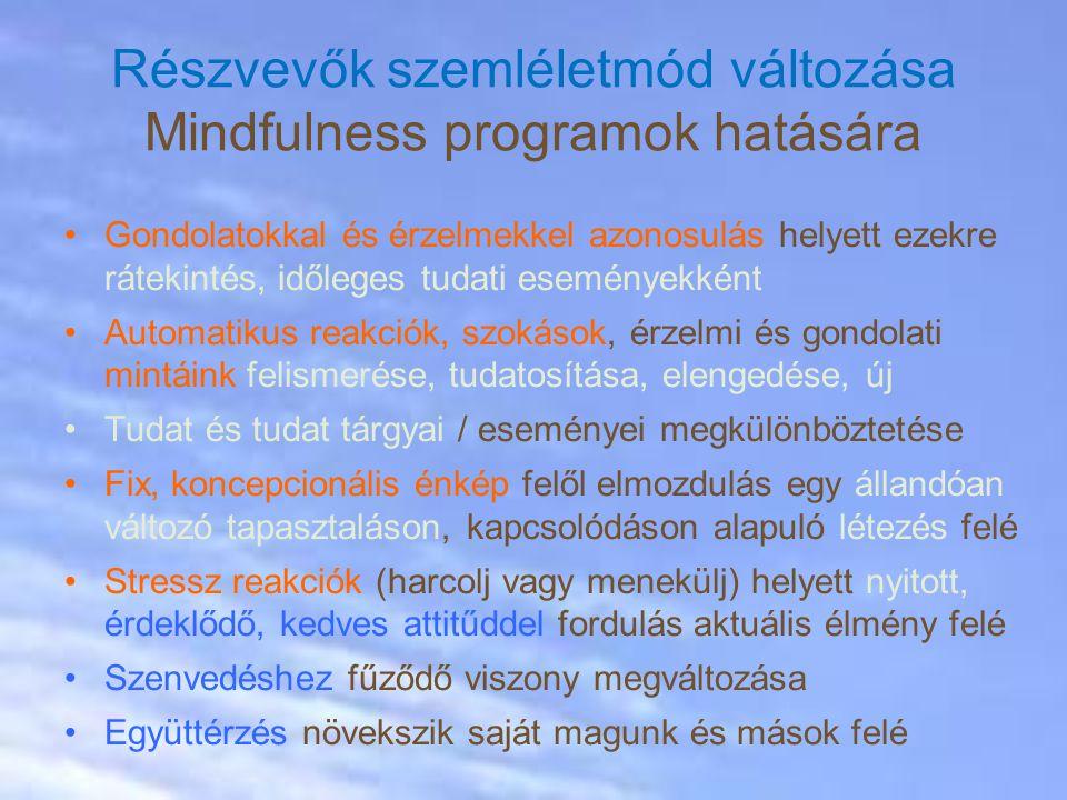 Részvevők szemléletmód változása Mindfulness programok hatására