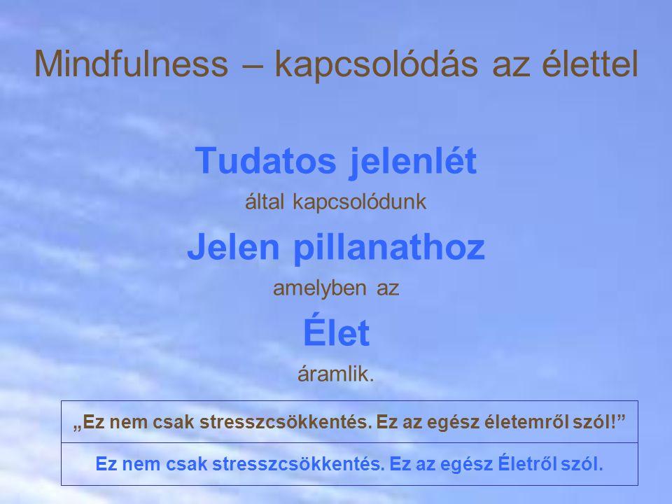 Mindfulness – kapcsolódás az élettel