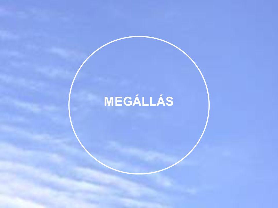 MEGÁLLÁS
