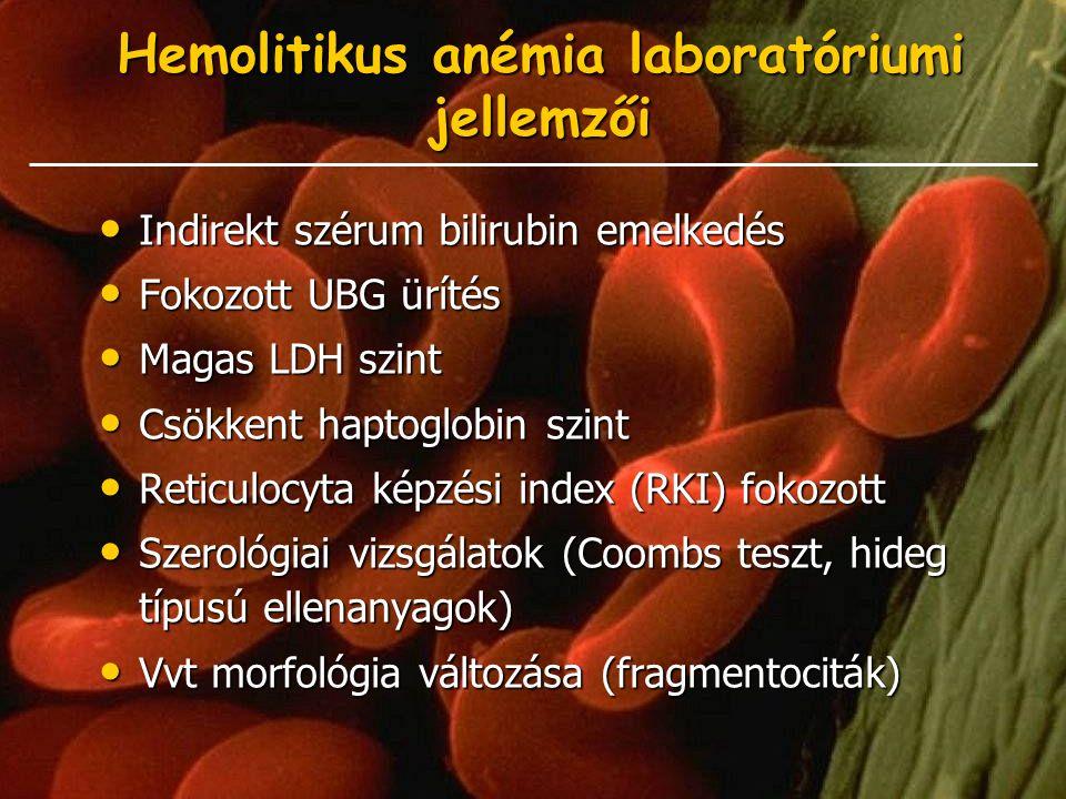 Hemolitikus anémia laboratóriumi jellemzői