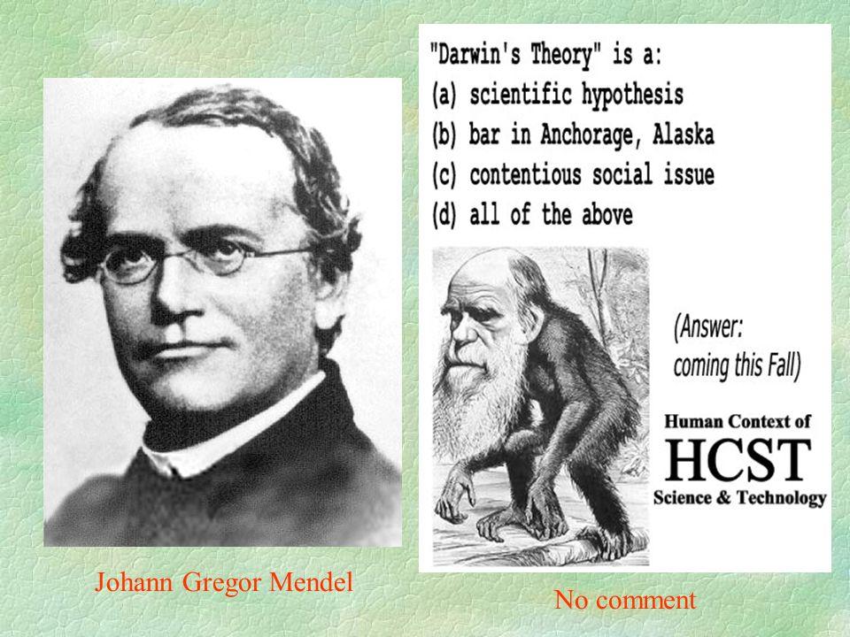 Johann Gregor Mendel No comment