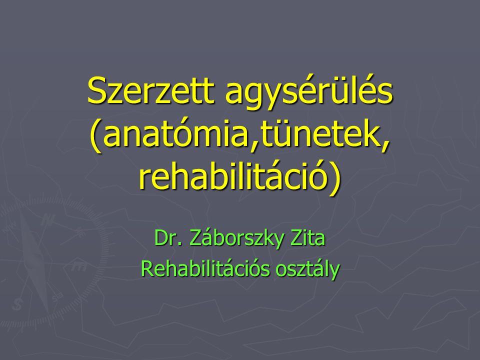 Szerzett agysérülés (anatómia,tünetek, rehabilitáció)