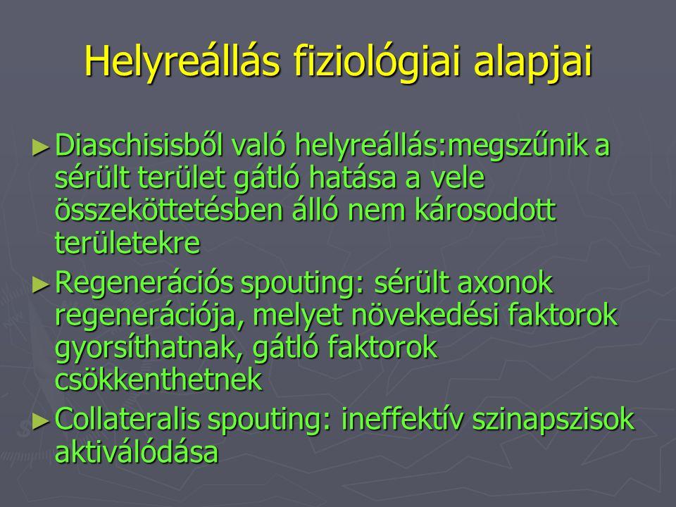 Helyreállás fiziológiai alapjai