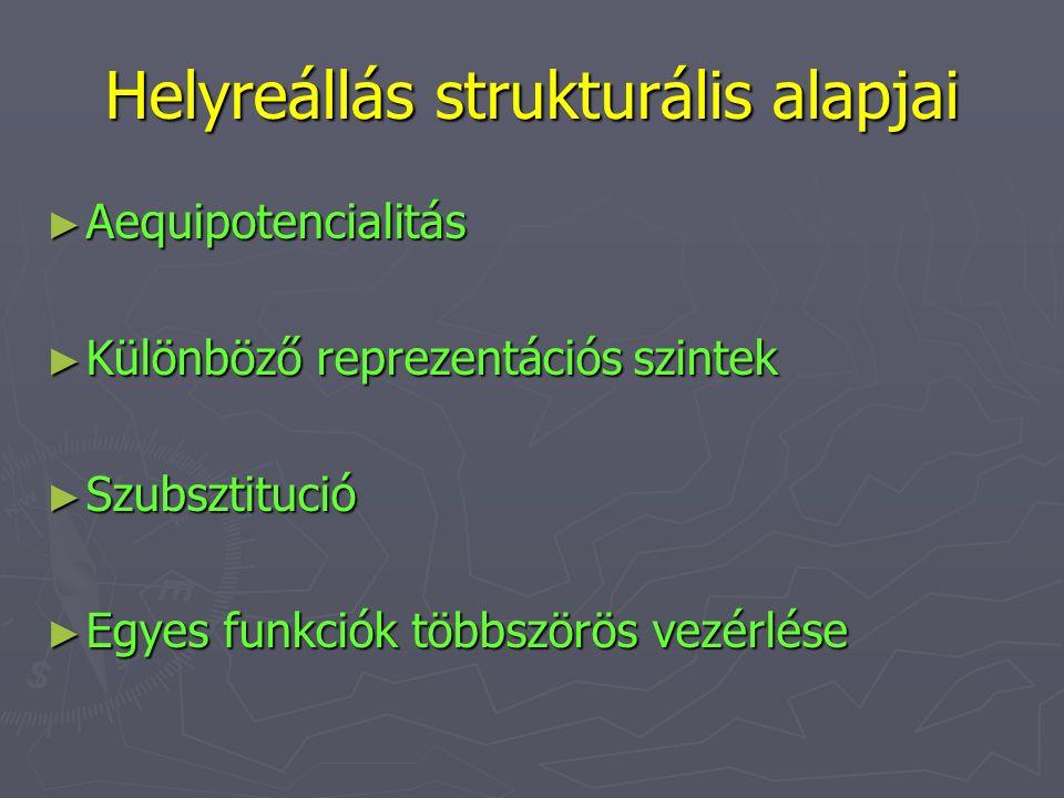Helyreállás strukturális alapjai