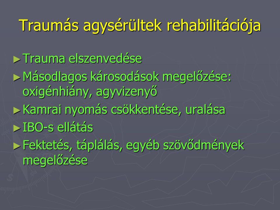 Traumás agysérültek rehabilitációja