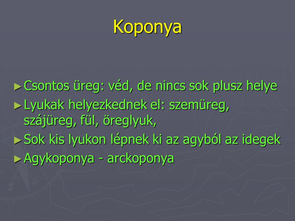 Koponya Csontos üreg: véd, de nincs sok plusz helye