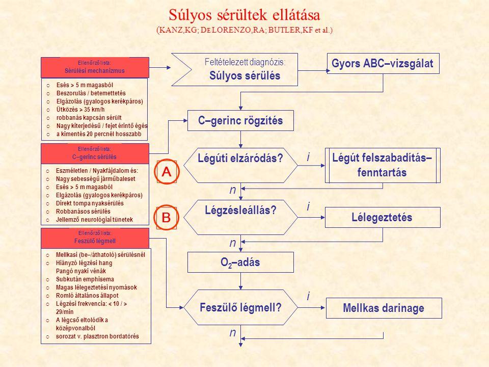 Súlyos sérültek ellátása (KANZ,KG; DE LORENZO,RA; BUTLER,KF et al.)